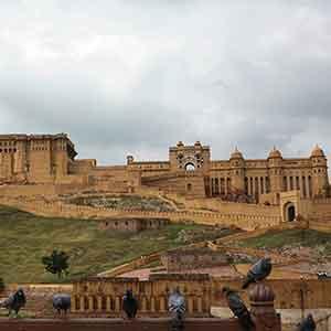 Jaipur-11f