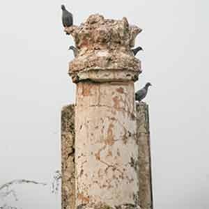 Tomb-16f